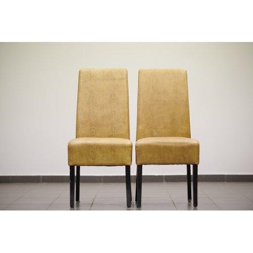 Design Chair Set (2 PCs)